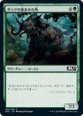 【JPN】ガラクの血まみれ角/Garruk's Gorehorn[MTG_M21_184C]