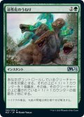【JPN】活性化のうねり/Invigorating Surge[MTG_M21_190U]