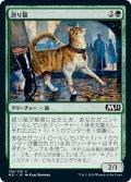 【JPN】誇り猫/Pridemalkin[MTG_M21_196C]