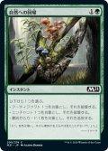 【JPN】★Foil★自然への回帰/Return to Nature[MTG_M21_200C]