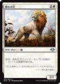 【JPN】群れの王/King of the Pride[MTG_MH1_016U]