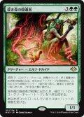 【JPN】深き森の隠遁者/Deep Forest Hermit[MTG_MH1_161R]