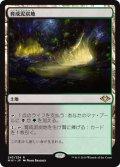 【JPN】育成泥炭地/Nurturing Peatland[MTG_MH1_243R]