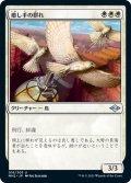【JPN】癒し手の群れ/Healer's Flock[MTG_MH2_016U]