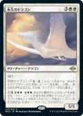 【JPN】永久のドラゴン/Timeless Dragon[MTG_MH2_035R]