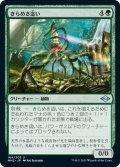 【JPN】きらめき這い/Glinting Creeper[MTG_MH2_164U]