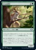 【JPN】リスの君主/Squirrel Sovereign[MTG_MH2_175U]
