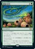 【JPN】新緑の命令/Verdant Command[MTG_MH2_182R]