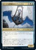 【JPN】エーテル宣誓会のスフィンクス/Ethersworn Sphinx[MTG_MH2_195U]