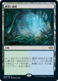 【JPN】★Foil★霧深い雨林/Misty Rainforest[MTG_MH2_250R]