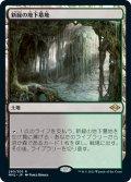 【JPN】新緑の地下墓地/Verdant Catacombs[MTG_MH2_260R]