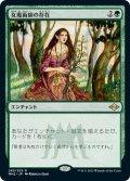 【JPN】女魔術師の存在/Enchantress's Presence[MTG_MH2_283R]