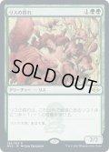 【JPN】★Foil★リスの群れ/Squirrel Mob[MTG_MH2_286R]