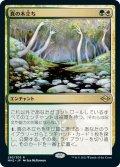 【JPN】真の木立ち/Sterling Grove[MTG_MH2_293R]