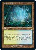 【JPN】★Foil★霧深い雨林/Misty Rainforest[MTG_MH2_438R]