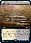 【JPN】湿地の干潟/Marsh Flats[MTG_MH2_476R]