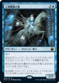 【JPN】上流階級の霊/Patrician Geist[MTG_MID_069R]