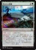 【JPN】残された廃墟/Ruin in Their Wake[MTG_OGW_122U]