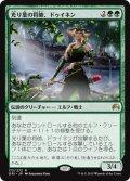 【JPN】光り葉の将帥、ドゥイネン/Dwynen, Gilt-Leaf Daen[MTG_ORI_172R]