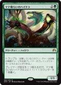 【JPN】マナ喰らいのハイドラ/Managorger Hydra[MTG_ORI_186R]