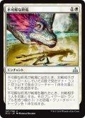 【JPN】不可解な終焉/Baffling End[RIX_001U]