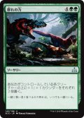 【JPN】群れの力/Strength of the Pack[RIX_145U]