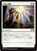 【JPN】天使の称賛/Angelic Exaltation[MTG_RNA_002U]