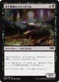 【JPN】地下墓地のクロコダイル/Catacomb Crocodile[MTG_RNA_067C]
