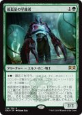 【JPN】成長室の守護者/Growth-Chamber Guardian[MTG_RNA_128R]