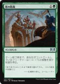 【JPN】★Foil★塔の防衛/Tower Defense[MTG_RNA_147U]