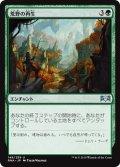 【JPN】荒野の再生/Wilderness Reclamation[MTG_RNA_149U]