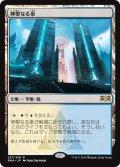 【JPN】神聖なる泉/Hallowed Fountain[MTG_RNA_251R]