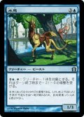 【JPN】水馬/Aquus Steed[MTG_RTR_029U]