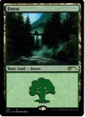 【ENG】森/Forest[MTG_SLD_109]