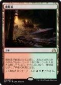 【JPN】獲物道/Game Trail[MTG_SOI_276R]