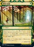 【JPN】★Foil★冒険の衝動/Adventurous Impulse[MTG_STA_049U]