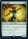 【JPN】龍護りの精鋭/Dragonsguard Elite[MTG_STX_127R]