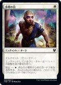 【JPN】歩哨の目/Sentinel's Eyes[MTG_THB_036C]
