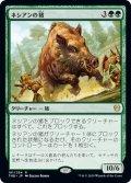 【JPN】ネシアンの猪/Nessian Boar[MTG_THB_181R]
