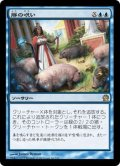 【JPN】豚の呪い/Curse of the Swine[MTG_THS_046R]
