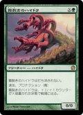 【JPN】霧裂きのハイドラ/Mistcutter Hydra[MTG_THS_162R]