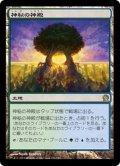 【JPN】神秘の神殿/Temple of Mystery[MTG_THS_226R]