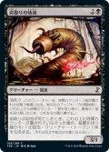 【JPN】命取りの幼虫/Deadly Grub[MTG_TSR_108C]