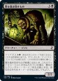 【JPN】墓を掻き回すもの/Grave Scrabbler[MTG_TSR_118C]