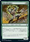 【JPN】原初の腕力魔道士/Primal Forcemage[MTG_TSR_225U]