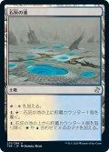 【JPN】★Foil★石灰の池/Calciform Pools[MTG_TSR_275U]