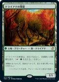 【JPN】ドライアドの東屋/Dryad Arbor[MTG_TSR_277R]