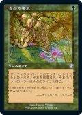 【JPN】★Foil★自然の要求/Nature's Claim[MTG_TSR_364B]