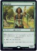【JPN】貴族の教主/Noble Hierarch[MTG_UMA_174R]