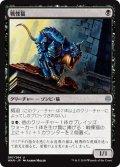 【JPN】戦慄猫/Dreadmalkin[MTG_WAR_087U]